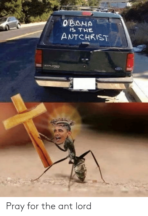 pray: Pray for the ant lord