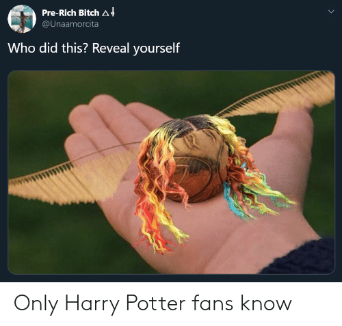 Harry Potter: Pre-Rich Bitch A 4  @Unaamorcita  Who did this? Reveal yourself Only Harry Potter fans know