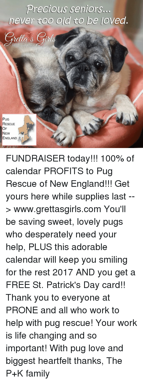 Life Change: Precious seniors.  never coo old to be loved.  PUG  RESCUE  OF  NEW  ENGLAND FUNDRAISER today!!! 100% of calendar PROFITS to Pug Rescue of New England!!! Get yours here while supplies last --> www.grettasgirls.com You'll be saving sweet, lovely pugs who desperately need your help, PLUS this adorable calendar will keep you smiling for the rest 2017 AND you get a FREE St. Patrick's Day card!! Thank you to everyone at PRONE and all who work to help with pug rescue! Your work is life changing and so important! With pug love and biggest heartfelt thanks, The P+K family