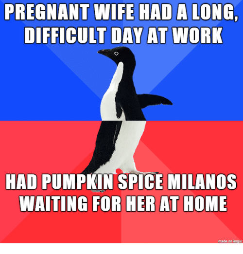 Pregnant Wife: PREGNANT WIFE HAD  DIFFICULT DAY AT  A LONG  WORK  HAD PUMPKIN SPICE MILANOS  WAITING FOR HER AT HOME  made on imgur