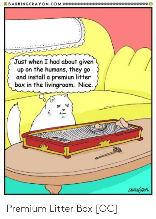 box: Premium Litter Box [OC]