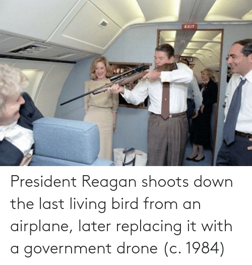 The Last: President Reagan shoots down the last living bird from an airplane, later replacing it with a government drone (c. 1984)