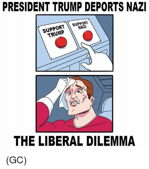 Memes, Trump, and 🤖: PRESIDENT TRUMP DEPORTS NAZI  SUPPORT  NAZI  TRUMP  THE LIBERAL DILEMMA (GC)