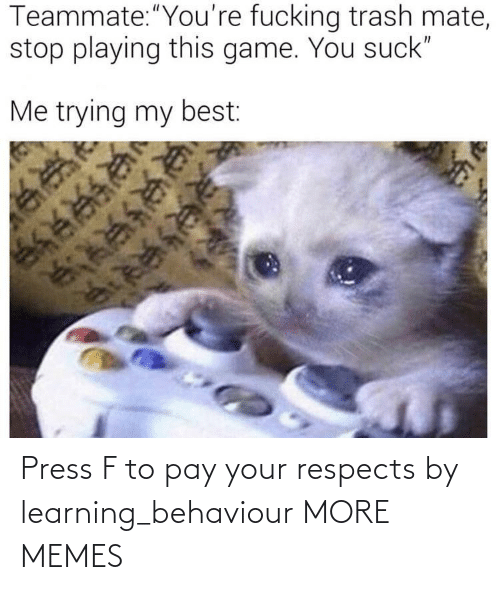 press: Press F to pay your respects by learning_behaviour MORE MEMES