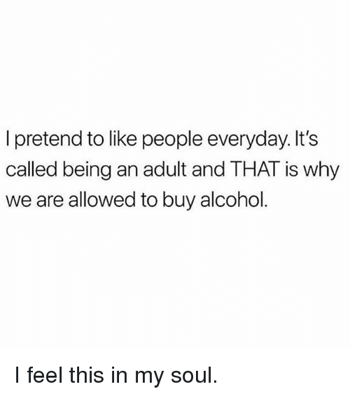 Being an Adult, Memes, and Alcohol: pretend to like people everyday. It's  called being an adult and THAT is why  we are allowed to buy alcohol I feel this in my soul.