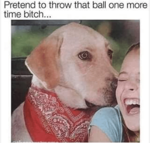 Bitch, Time, and One: Pretend to throw that ball one more  time bitch...