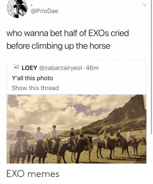 Climbing, Memes, and Horse: @PrioDae  who wanna bet half of EXOs cried  before climbing up the horse  LOEY @zabarzairyeol 46m  Y'all this photo  Show this thread EXO memes