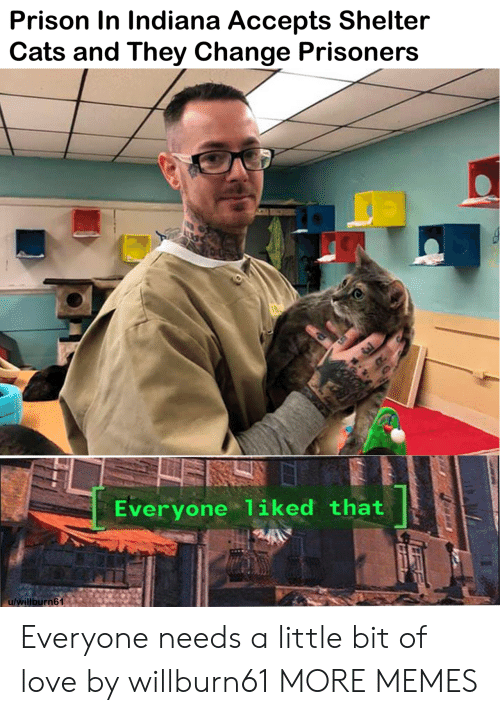 Indiana: Prison In Indiana Accepts Shelter  Cats and They Change Prisoners  Everyone liked that  u/willburn61 Everyone needs a little bit of love by willburn61 MORE MEMES