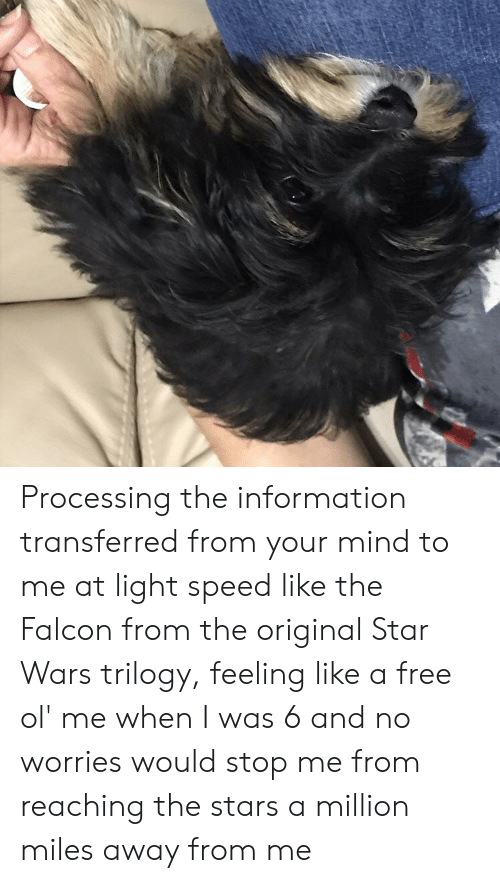 Star Wars, Free, and Information: Processing the information transferred from your mind to me at light speed like the Falcon from the original Star Wars trilogy, feeling like a free ol' me when I was 6 and no worries would stop me from reaching the stars a million miles away from me