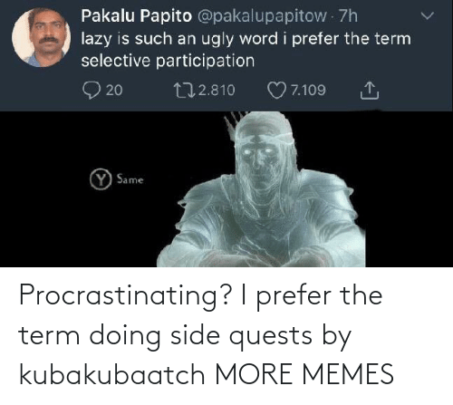 Prefer: Procrastinating? I prefer the term doing side quests by kubakubaatch MORE MEMES