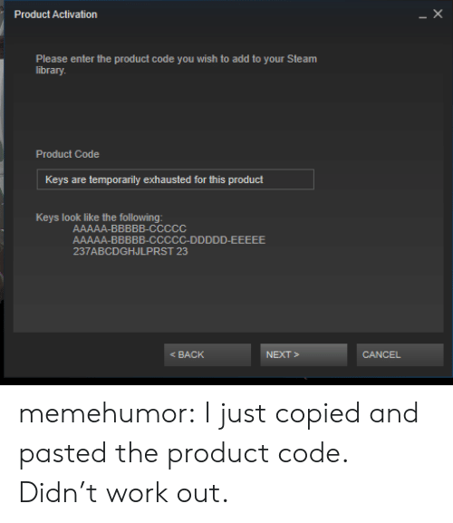 Steam, Tumblr, and Work: Product Activation  Please enter the product code you wish to add to your Steam  library  Product Code  Keys are temporarily exhausted for this product  Keys look like the following  237ABCDGHJLPRST 23  BACK  CANCEL memehumor:  I just copied and pasted the product code. Didn't work out.