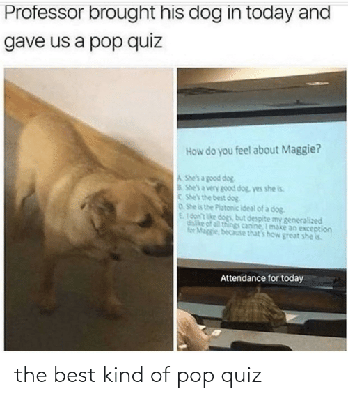 canine: Professor brought his dog in today and  gave us a pop quiz  How do you feel about Maggie?  A She's a good dog  8 She's a very good dog, yes she is  CShe's the best dog  DShe is the Platonic ideal of a dog.  E16on't ke dogs but despite my generalized  disike of all things canine, I make an exception  for Maggie, because that's how great she is  Attendance for today the best kind of pop quiz