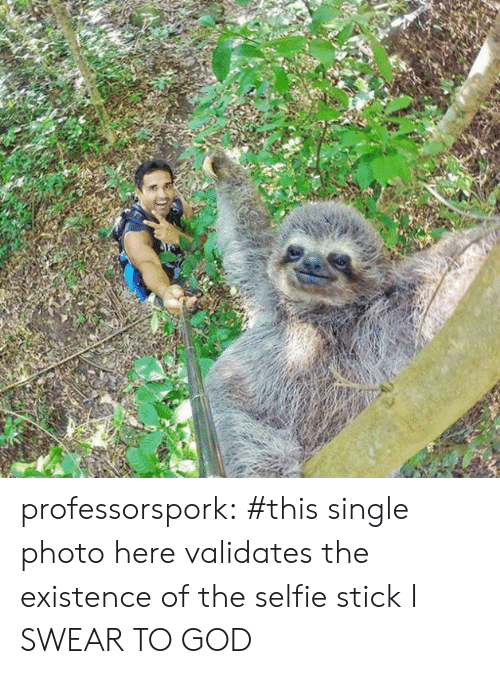 selfie: professorspork:    #this single photo here validates the existence of the selfie stick I SWEAR TO GOD