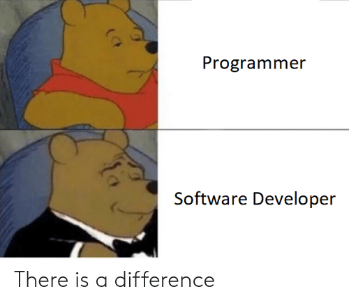 software developer: Programmer  Software Developer There is a difference
