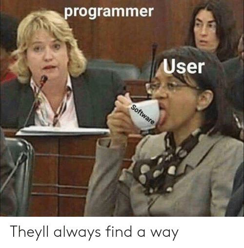 They, User, and Always: programmer  User Theyll always find a way