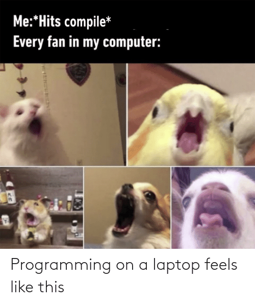 On A: Programming on a laptop feels like this