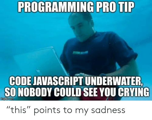 "Points: PROGRAMMING PRO TIP  CODE JAVASCRIPT UNDERWATER  SO NOBODY COULD SEE YOU CRYING  imgfip.com ""this"" points to my sadness"