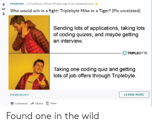 Quiz, Tiger, and Wild: PROMOTED u/Triplebyte official 29 days ago from triplebyte.com  47 Who would win in a fight: Triplebyte Mike or a Tiger? [Pic unrelated]  Sending lots of applications, taking lots  of coding quizes, and maybe getting  an interview.  TRIPLEBYTE  Taking one coding quiz and getting  lots of job offers through Triplebyte.  RIPL  triplebyte.com  LEARN MORE  Џ comment-Share A Save Found one in the wild