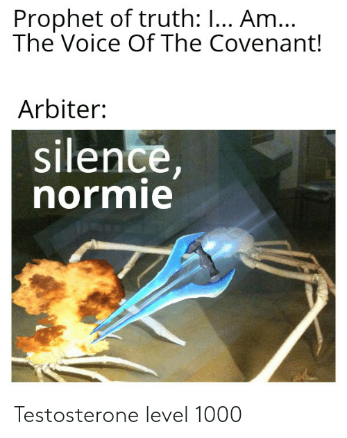 arbiter: Prophet of truth: I... Am...  The Voice Of The Covenant!  Arbiter:  silence,  normie Testosterone level 1000