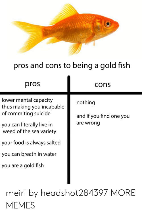 thus: pros and cons to being a gold fish  pros  cons  lower mental capacity  thus making you incapable  of commiting suicide  nothing  and if you find one you  are wrong  you can literally live in  weed of the sea variety  your food is always salted  you can breath in water  you are a gold fish meirl by headshot284397 MORE MEMES