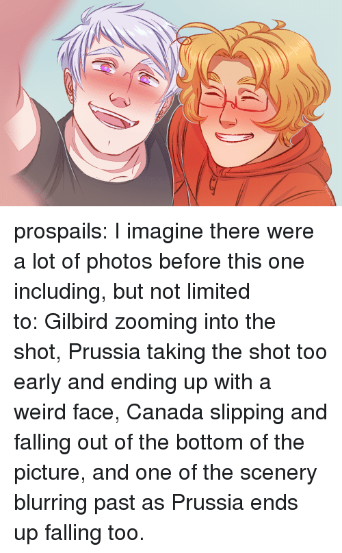 Target, Tumblr, and Weird: prospails:  I imagine there were a lot of photos before this one including, but not limited to:Gilbird zooming into the shot, Prussia taking the shot too early and ending up with a weird face, Canada slipping and falling out of the bottom of the picture, and one of the scenery blurring past as Prussia ends up falling too.