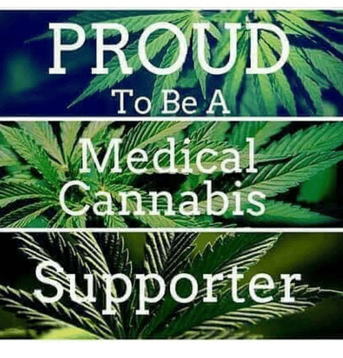 Cannabies: PROU  To Be A  Medical  Cannabis  orter