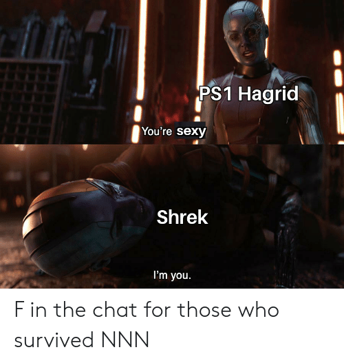 Youre Sexy: PS1 Hagrid  You're sexy  Shrek  I'm you. F in the chat for those who survived NNN