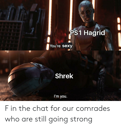 Youre Sexy: PS1 Hagrid  You're sexy  Shrek  I'm you. F in the chat for our comrades who are still going strong
