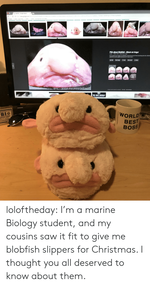 It Fit: PSA about Biobish-Album on imgur  BIO  WORLD  BEST  Boss loloftheday:  I'm a marine Biology student, and my cousins saw it fit to give me blobfish slippers for Christmas. I thought you all deserved to know about them.