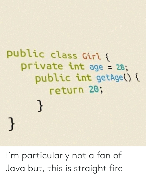 Age: public class Girl {  private int age = 28;  public int getAge() {  return 20;  %3D  } I'm particularly not a fan of Java but, this is straight fire
