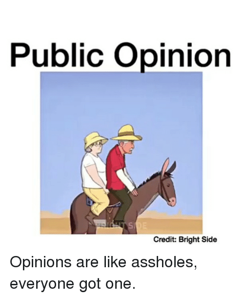 Assholism: Public opinion  Credit: Bright Side Opinions are like assholes, everyone got one.