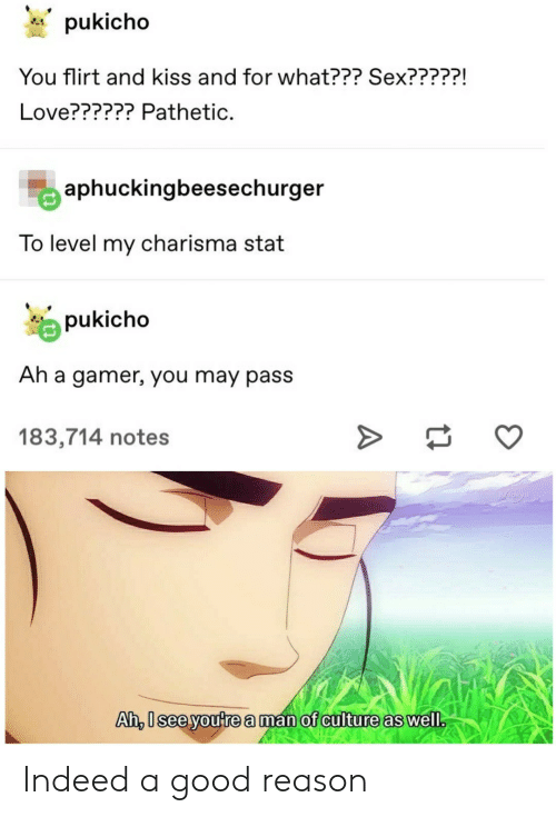 Love, Sex, and Good: pukicho  You flirt and kiss and for what??? Sex?????!  Love?????? Pathetic.  aphuckingbeesechurger  To level my charisma stat  pukicho  Ah a gamer, you may pass  183,714 notes  Ah, 0sceyoute a man of culture as well Indeed a good reason