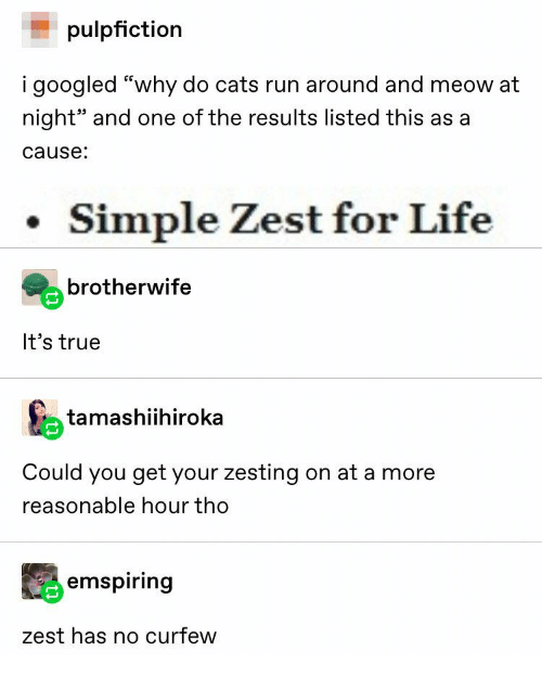 "Cats, Life, and Run: pulpfiction  i googled ""why do cats run around and meow at  night"" and one of the results listed this as a  cause:  Simple Zest for Life  brotherwife  It's true  tamashiihiroka  Could you get your zesting on at a more  reasonable hour tho  emspiring  zest has no curfew"