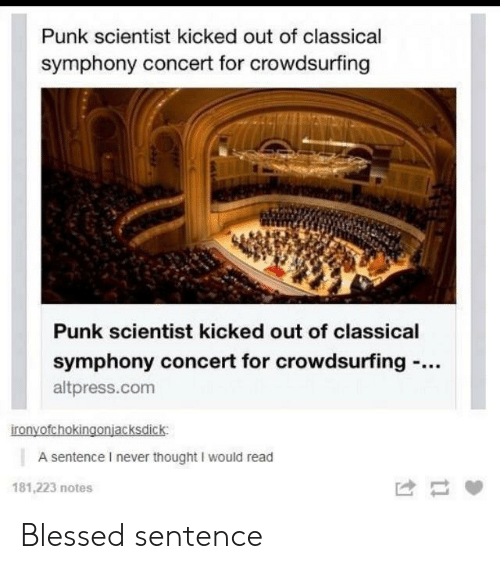 Blessed, Never, and Thought: Punk scientist kicked out of classical  symphony concert for crowdsurfing  Punk scientist kicked out of classical  symphony concert for crowdsurfing -..  altpress.com  ironyofchokingonjacksdick  A sentence I never thought I would read  181,223 notes Blessed sentence