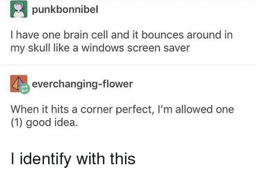 One 1: punkbonnibel  I have one brain cell and it bounces around in  my skull like a windows screen saver  everchanging-flower  When it hits a corner perfect, I'm allowed one  (1) good idea. I identify with this