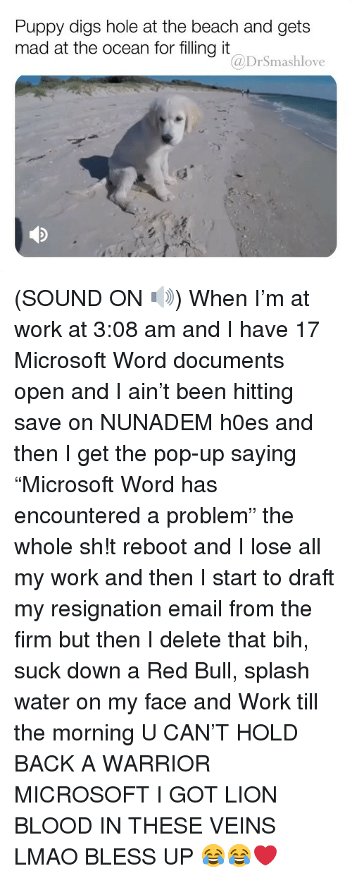 """Bless Up, Lmao, and Memes: Puppy digs hole at the beach and gets  mad at the ocean for filling it  @DrSmashlove (SOUND ON 🔊) When I'm at work at 3:08 am and I have 17 Microsoft Word documents open and I ain't been hitting save on NUNADEM h0es and then I get the pop-up saying """"Microsoft Word has encountered a problem"""" the whole sh!t reboot and I lose all my work and then I start to draft my resignation email from the firm but then I delete that bih, suck down a Red Bull, splash water on my face and Work till the morning U CAN'T HOLD BACK A WARRIOR MICROSOFT I GOT LION BLOOD IN THESE VEINS LMAO BLESS UP 😂😂❤️"""