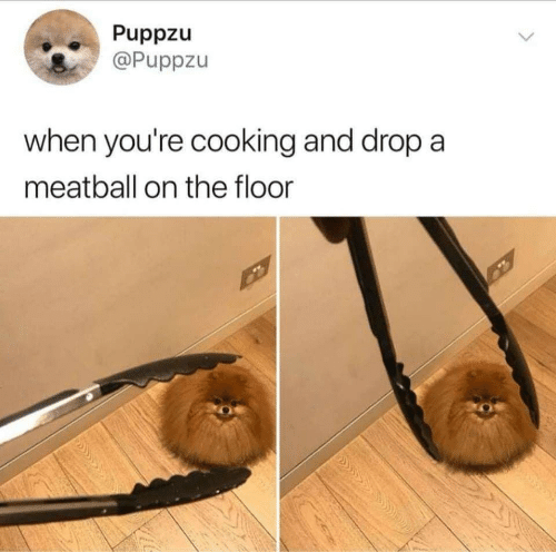 Cooking, Youre, and Drop: Puppzu  @Puppzu  when you're cooking and drop a  meatball on the floor