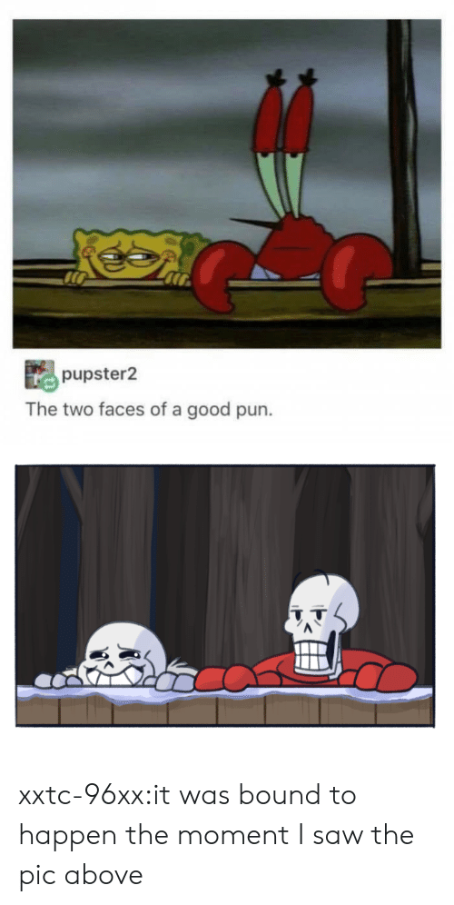 Saw, Tumblr, and Blog: pupster2  The two faces of a good pun. xxtc-96xx:it was bound to happen the moment I saw the pic above