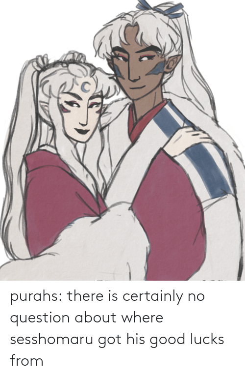 certainly: purahs:  there is certainly no question about where sesshomaru got his good lucks from
