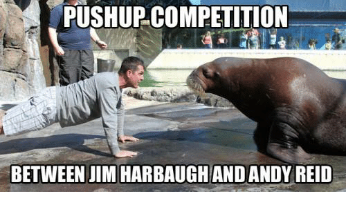 Jim Harbaugh: PUSHUPCOMPETITION  BETWEEN JIM HARBAUGH AND ANDY REID