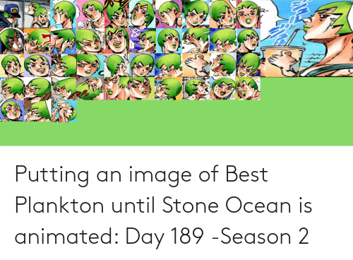 Animated: Putting an image of Best Plankton until Stone Ocean is animated: Day 189 -Season 2