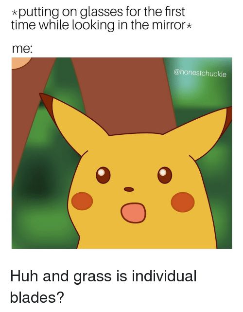 Looking In: *putting on glasses for the first  time while looking in the mirror*  me:  @honestchuckle Huh and grass is individual blades?