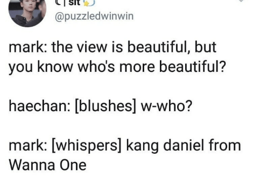Kang: @puzzledwinwin  mark: the view is beautiful, but  you know who's more beautiful?  haechan: [blushes] w-who?  mark: [whispers] kang daniel from  Wanna One