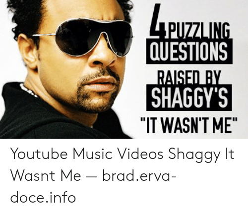 """shaggy it wasnt me: PUZZLING  QUESTIONS  RAISED BY  