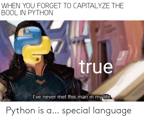 language: Python is a… special language