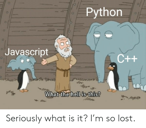 M So: Python  ol  Javascript  C++  What the hell is this? Seriously what is it? I'm so lost.