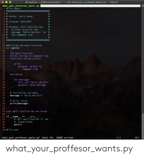 "Being Alone, Hello, and World: python-pi@hollywoodpi2:~ vim what your_professorwants.py 106x51  what_your_professor_wants.py  #File begin  1  1 #######  2 #  3 # Author : Holly Wood  4 #  #  5 # Created: 8/8/2019  6 #  7 # Purpose: This function was  written to print the  message 'Hello World\n' to  the command line.  #  8 #  #  9 #  10#  11 #  #  12 ###  13  14 #defining the main function  15 def main () :  16  17  The main Function.  18  Prints String to command line.  Functions called within:  19  20  print  urpose: prints to  command line  21  22  23  24  25  Variables:  26  27  str message:  28  init val: 'Hello world\n'  purpose: hold message  30  31  # initiali ze variable  32  33  'Hello World\n'  message =  34  # print value  print (message)  35  36  37  38  III  39 Lets main function be ran alone  40  _name  # call main funtion if ran  'main__'  41 if  42  43  # stand alone  44  main()  45  46 #File end  ""what_your_professor_wants.py"" [dos] 47L, 1020C written  1,1  All  99L what_your_proffesor_wants.py"