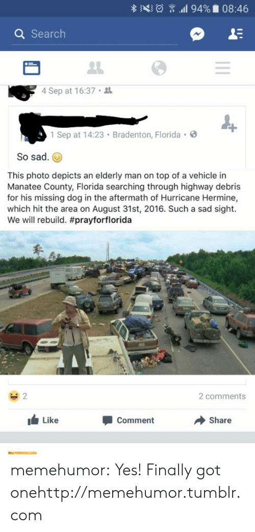 Missing Dog: Q Search  4 Sep at 16:37  1 Sep at 14:23 Bradenton, Florida .  So sad.  This photo depicts an elderly man on top of a vehicle in  Manatee County, Florida searching through highway debris  for his missing dog in the aftermath of Hurricane Hermine,  which hit the area on August 31st, 2016. Such a sad sight.  We will rebuild. #prayforflorida  2 comments  Like  Comment  Share memehumor:  Yes! Finally got onehttp://memehumor.tumblr.com