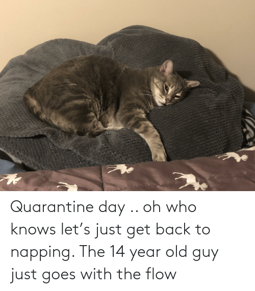 14 Year Old: Quarantine day .. oh who knows let's just get back to napping. The 14 year old guy just goes with the flow