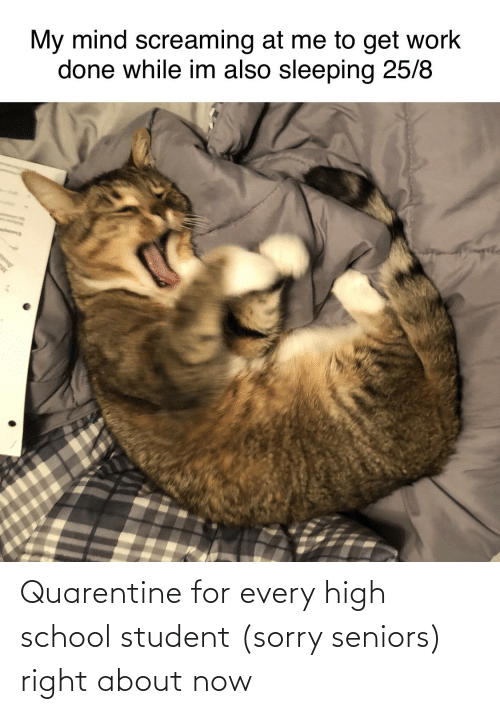 seniors: Quarentine for every high school student (sorry seniors) right about now